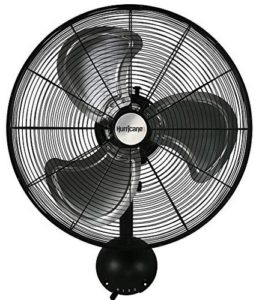 Hurricane fan 20 inch